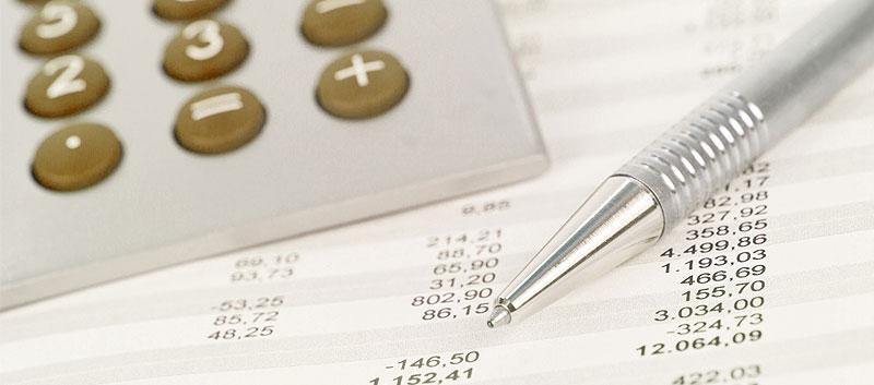 Bulgarian accountants